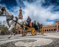Sevilla, un viaje para disfrutar del arte y la gastronomía
